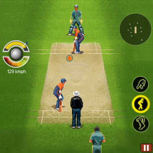 Ultimate Cricket '2011: World Cup Edition