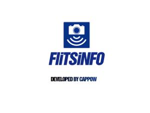 Flitsinfo