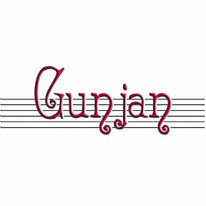 Gunjan for blackberry Screenshot