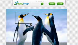 EasyCrop for BlackBerry PlayBook for blackberry Screenshot